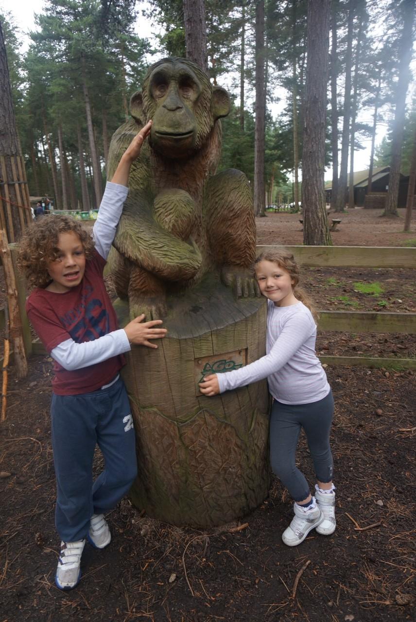 Go Ape at Sherwood Pines