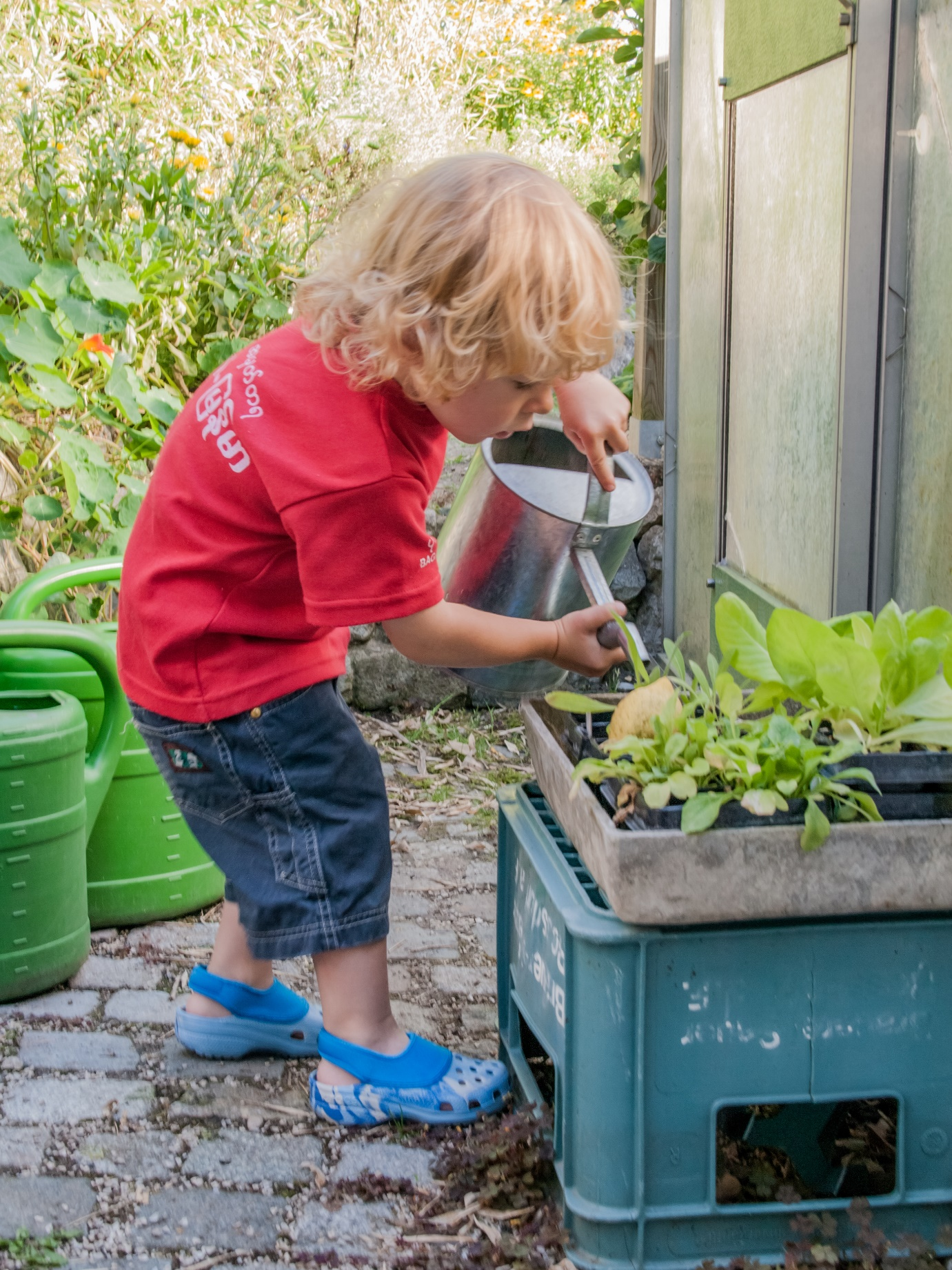 Ways to Encourage Your Child to be More Green