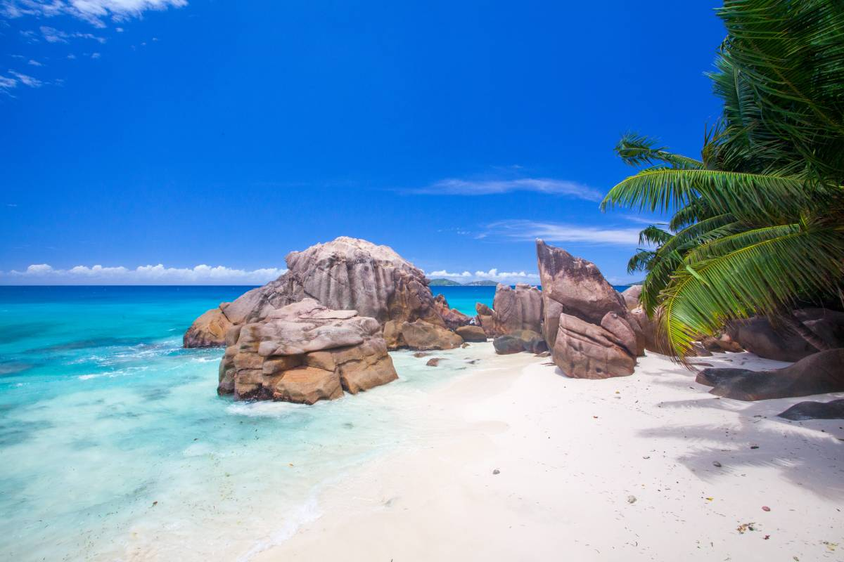 The Tax Benefits of Opening a Company in Seychelles