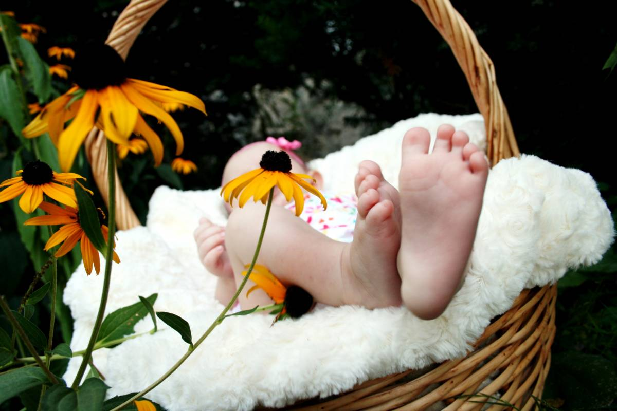 Getting your baby photo ready, How to get your baby photo ready