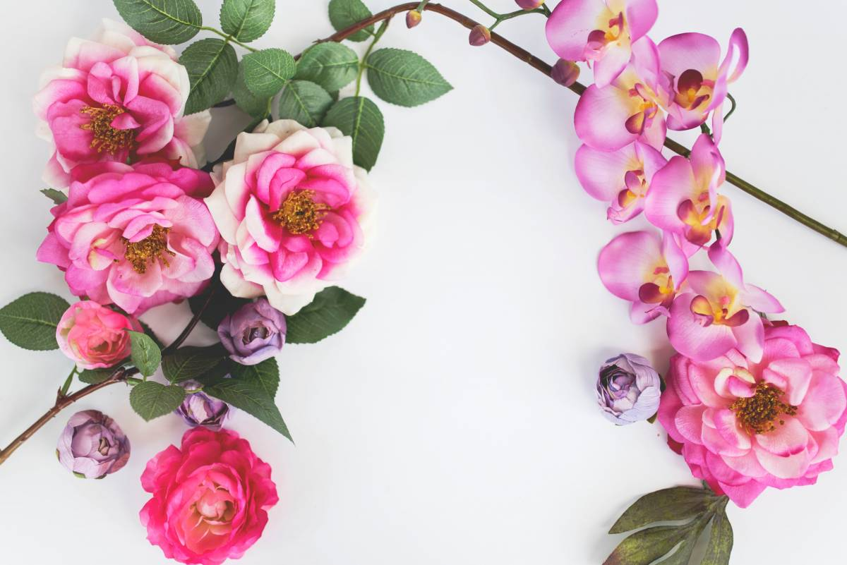 the benefits of flowers, benefits of flowers