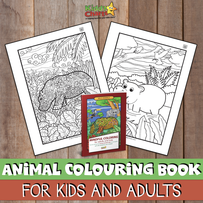 Mindful Colouring Book for Kids and Adults